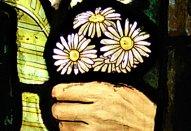 CRBS daisy